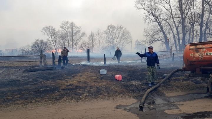 Власти Зауралья обещают выплаты тем, кто будет сообщать о поджигателях лесов