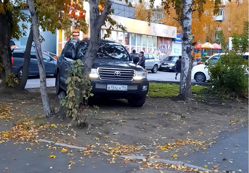 Припарковался среди деревьев