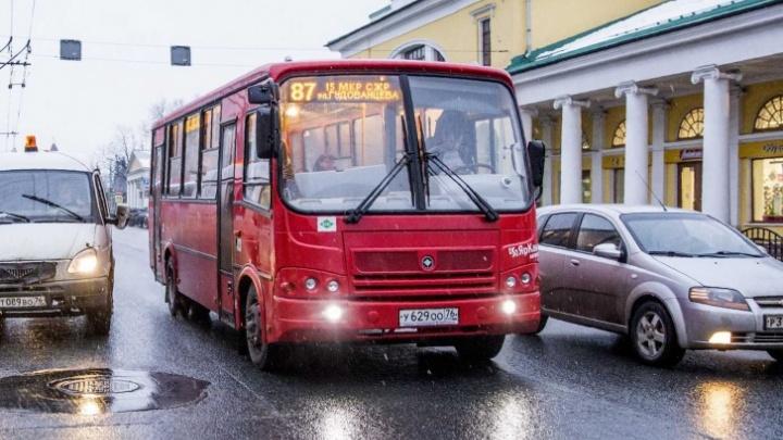 Три автобуса и три маршрутки в Ярославле временно изменят схему движения