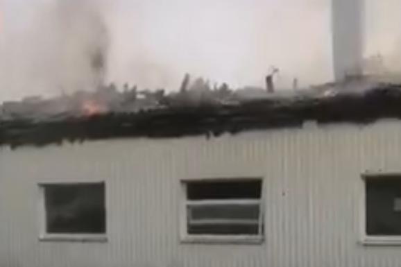 Спасатели сняли на видео, как вызволяли животных из пожара в Башкирии