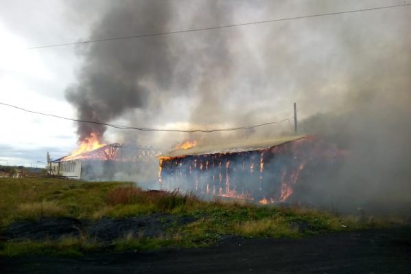 Единственная школа на многие километры вокруг сгорела полностью