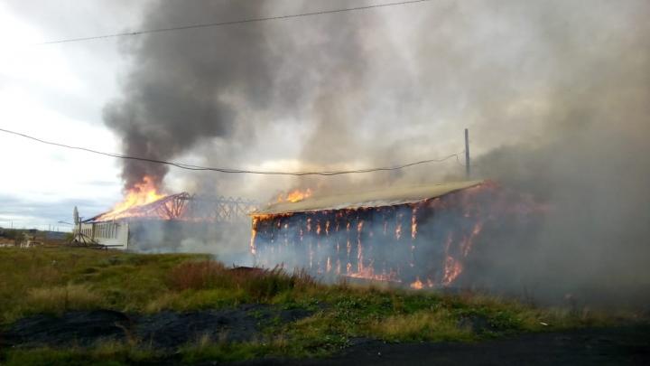 На Таймыре в Волочанке сгорела школа, пожарной части там нет