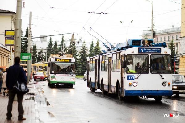 Городского транспорта на улицах Ярославля стало больше