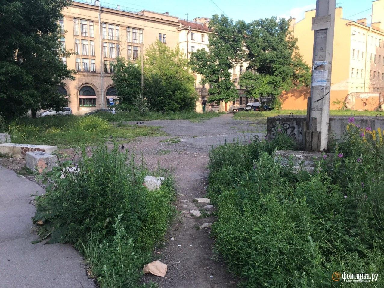 Сытнинская улица&nbsp;<br><br>автор фото Денис Лебедев / «Фонтанка.ру»<br>