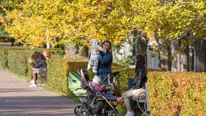 Ирина Гехт рассказала, когда в Челябинской области выплатят пособия безработным и на детей