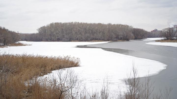 Вилами на воде. Заячий остров в Челябинске выставили на продажу, сколько просят, и кому он нужен