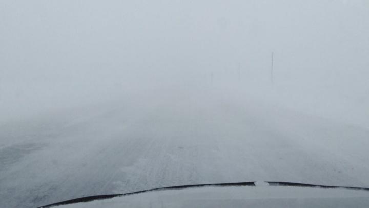 Нулевая видимость на дорогах и поваленные заборы: в Тюмени из-за циклона разбушевался ветер