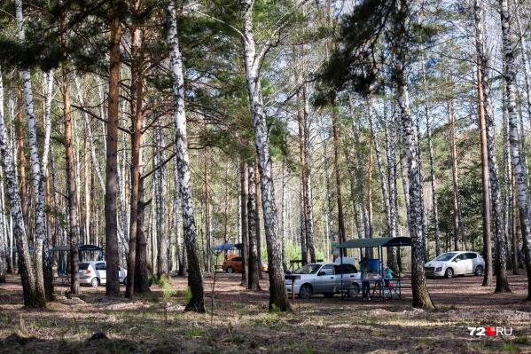 Запрет посещать парки тюменцы нарушили еще в начале майских праздников
