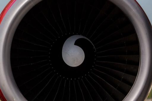 Во время взлета в турбину самолета Сочи — Новосибирск попала птица