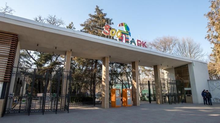 «Это не сигнал бедствия»: ростовский зоопарк рассказал, как можно помочь его питомцам