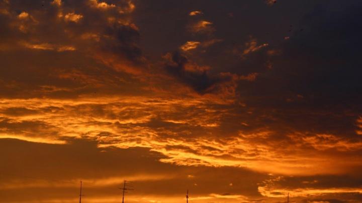 Небо горит: разглядываем фотографии восхитительного летнего заката над Новосибирском