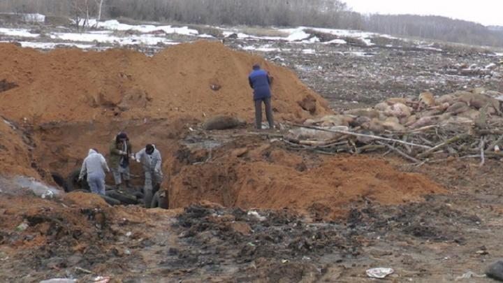 В двух районах Самарской области объявили режим ЧС