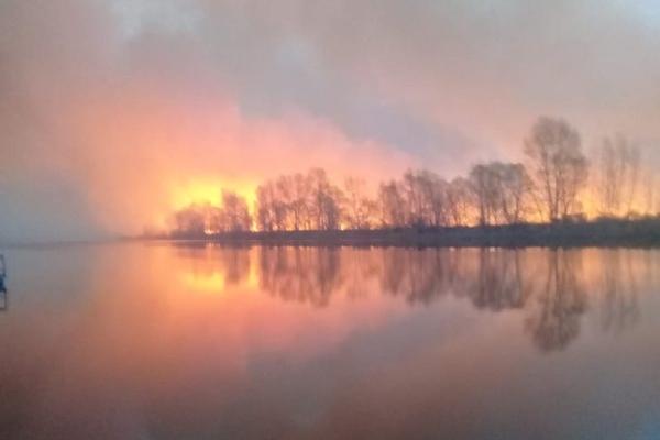 «Весь остров уже горит»: под Новосибирском загорелся лес около села
