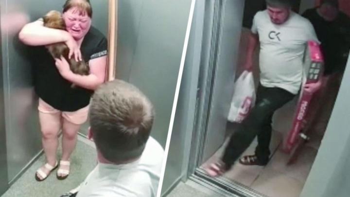 Живодер, запинавший собаку в лифте в Компрессорном, пойдет под суд