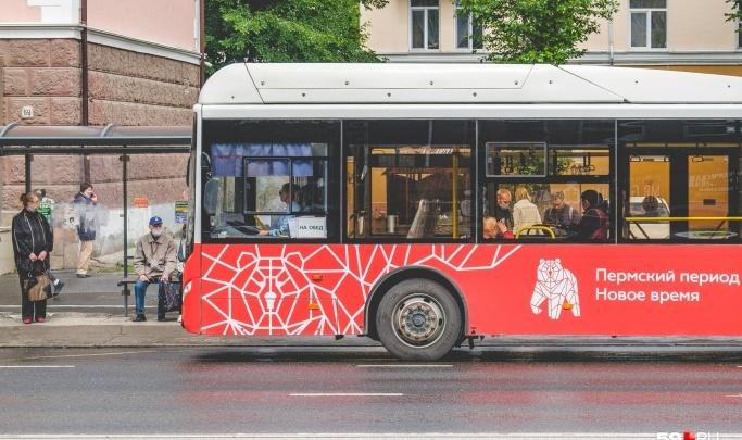 На двух пермских автобусных маршрутах система будет будить водителей, если они начнут засыпать