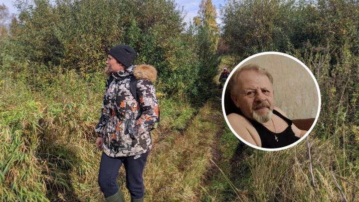 В лесу Нижней Тавды сутки ищут пропавшего 71-летнего грибника