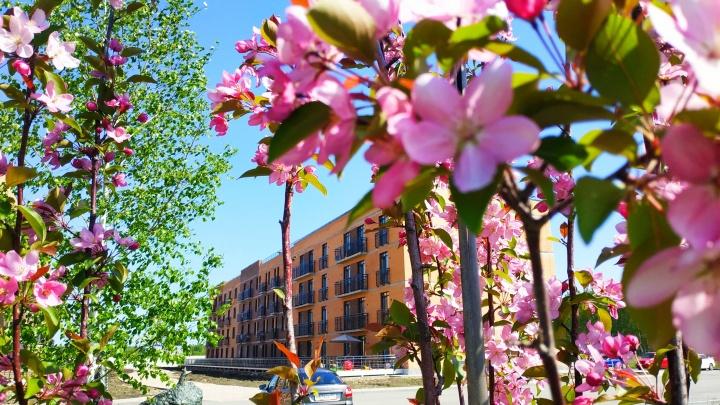 В необычном ЖК распродают квартиры в ипотеку под 2,7% — место фантастическое