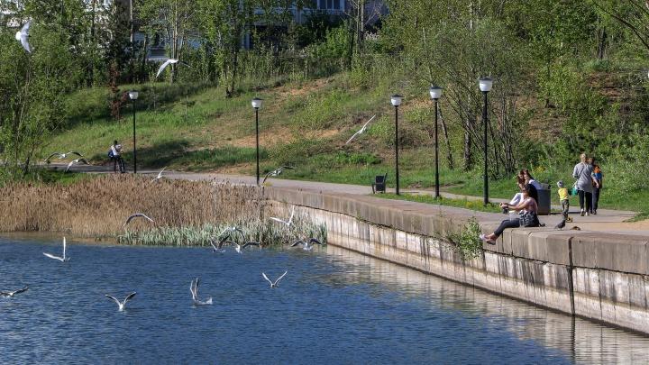МЧС предупреждает: резкое похолодание скоро придёт в Нижний Новгород