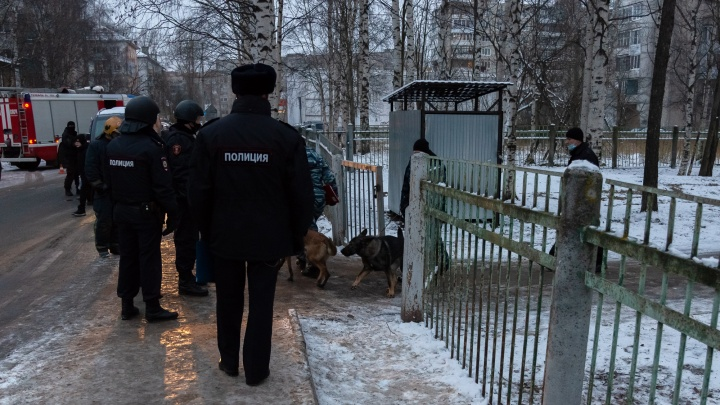 Сообщения о минировании школ в Архангельске оказались ложными