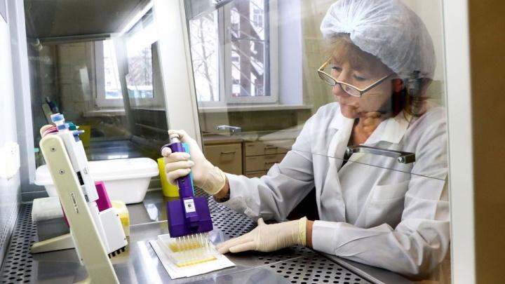 11 мифов о коронавирусе: ВОЗ отвечает на вопросы про чеснок, антибиотики и «болеют только старики»