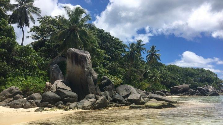 Остались без Бали: в Ярославле турагент содрала с туристов сотни тысяч и никуда их не отправила