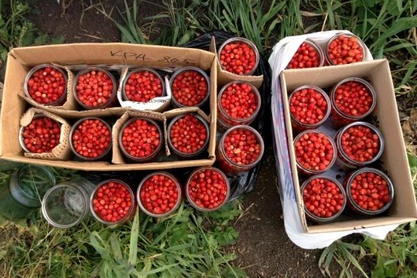 Варенье в деревне делают из лесных ягод, которые собирают местные жители