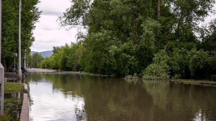 Остров Татышев затопило майским ливнем и превратило в болото. Фоторепортаж