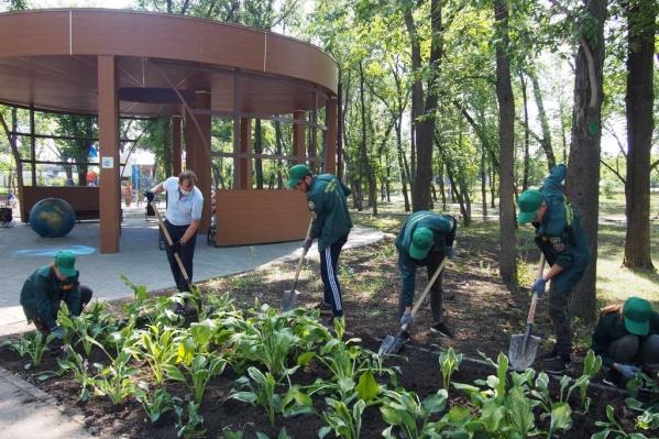 8 июля, в День семьи, любви и верности, в парке имени Терешковой высадили цветы в клумбы