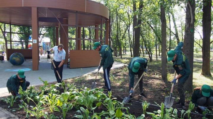 В реконструкции челябинского парка Терешковой нашли нарушения на полмиллиона рублей