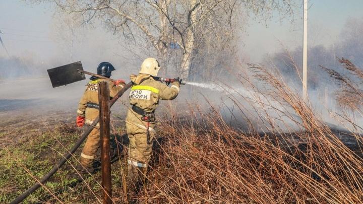 В Кургане произошел крупный природный пожар