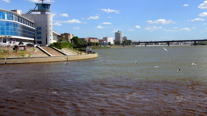 В реках Омской области обнаружили пестициды, ртуть и фосфаты