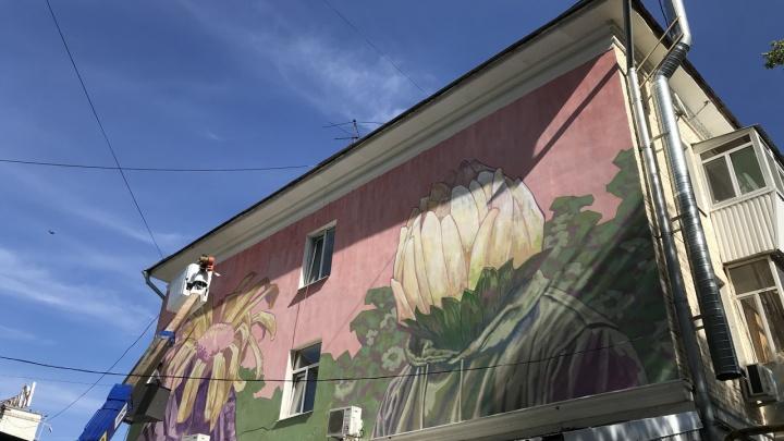 Стрит-арт в Самаре: появились адреса муралов, которые откроют к Дню города