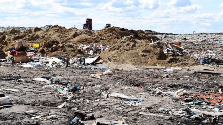 В Омске готовятся ликвидировать две закрытые свалки