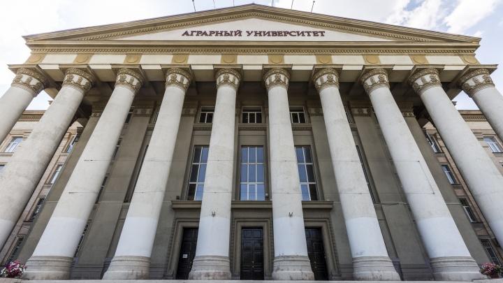 «Отправим копию на электронку»: выпускники вузов Волгограда из-за коронавируса увидят дипломы осенью