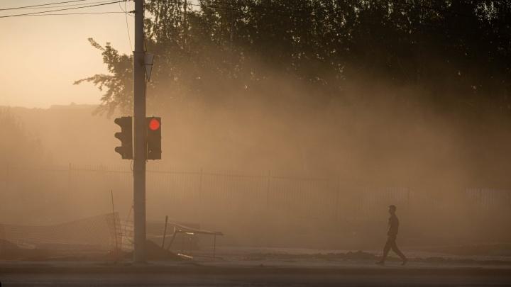 Ночью до -2 градусов, утром — туманы: какая погода ждёт новосибирцев в ближайшие дни