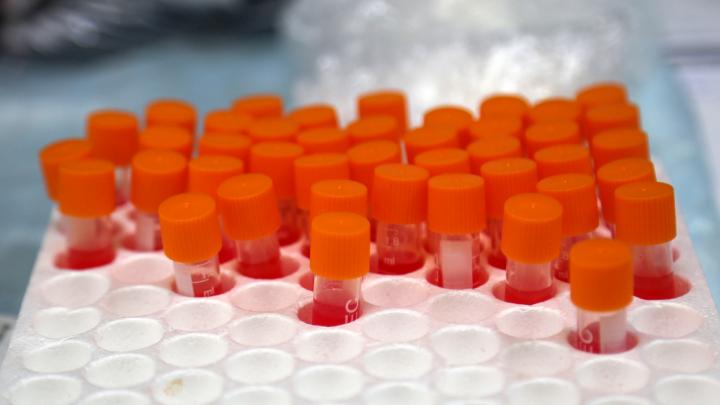 В Уфе частная лаборатория стала проводить анализы на коронавирус