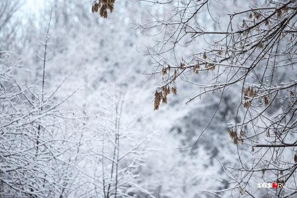 """Днем температура поднимется до <nobr class=""""_"""">-2... -7 градусов</nobr> на севере области, на юге — до <nobr class=""""_"""">3 градусов</nobr> выше нуля"""