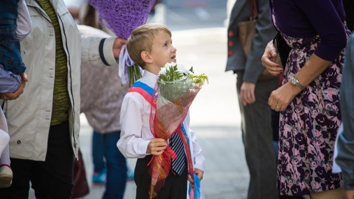 Власти рассказали о дистанционке в школах Новосибирска с 1 сентября: как это будет