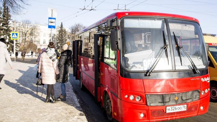 Транспортная реформа в Ярославле: власти назвали номера маршруток, от которых избавятся навсегда