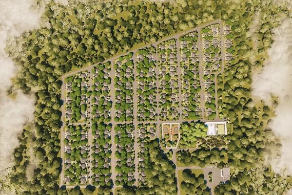 """Планировалось застроить <nobr class=""""_"""">150 000</nobr> квадратных метров — поселок был бы разделен на 160 участков"""