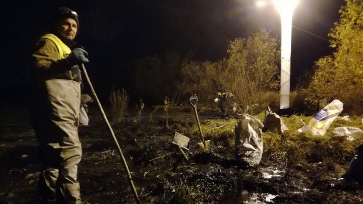 Возле острова Бревенник в Архангельске обнаружили разлив мазута