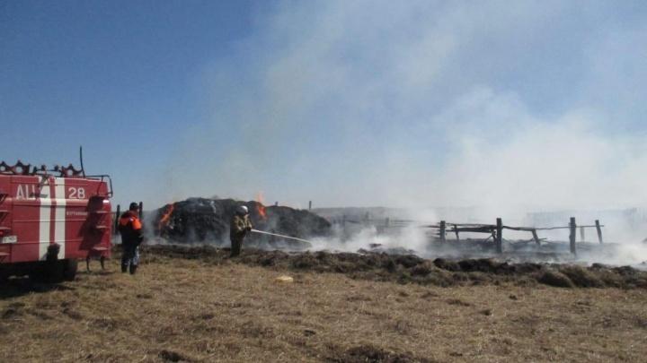 В зауральской деревне дети во время игры устроили пожар
