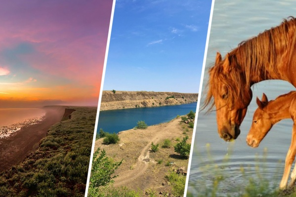 Вы можете поехать к каньону, грязевому пруду или к озеру, у которого живут мустанги