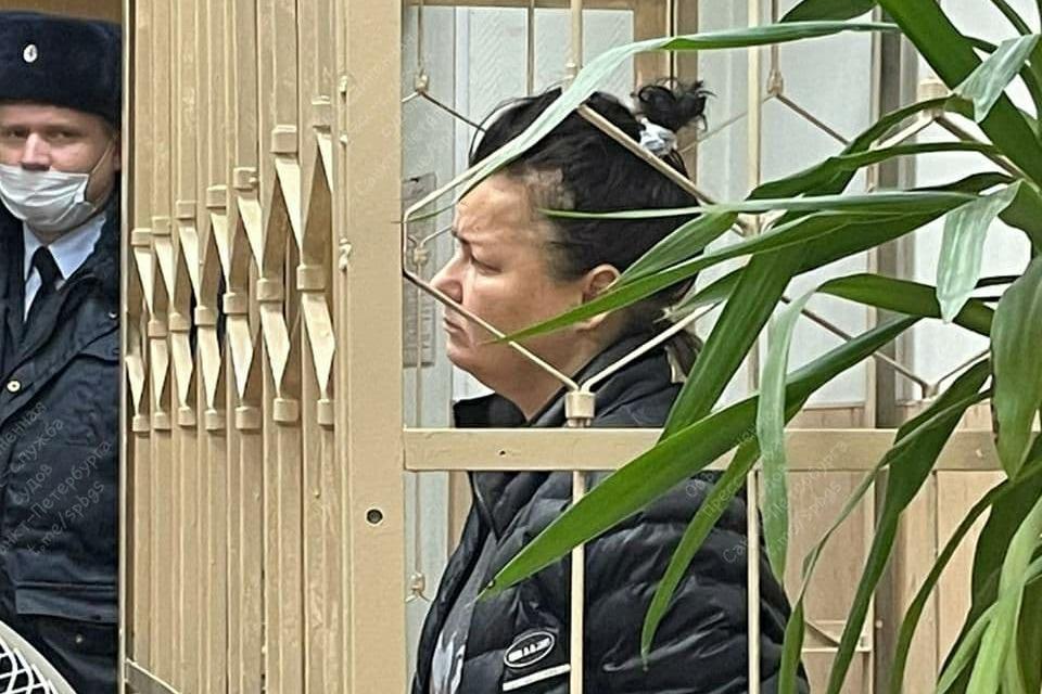 Светлана Вимба в Красногвардейском суде Санкт-Петербурга