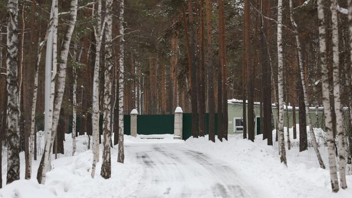 «Блефуют так, что сами себе верят»: в Челябинске расширяют резиденцию губернатора за счёт бора