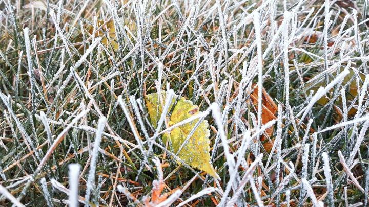 В Самарской области синоптики предупредили о морозах до -9