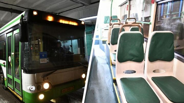 Бесплатные московские автобусы прибыли в Ярославль: как они выглядят