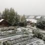 Холоднее, чем в прошлом году: какой зимы ожидать Архангельской области — прогноз Росгидромета