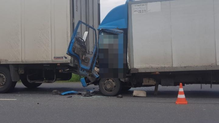 Погибшего зажало в кабине: в Самарской области на трассе столкнулись два грузовика