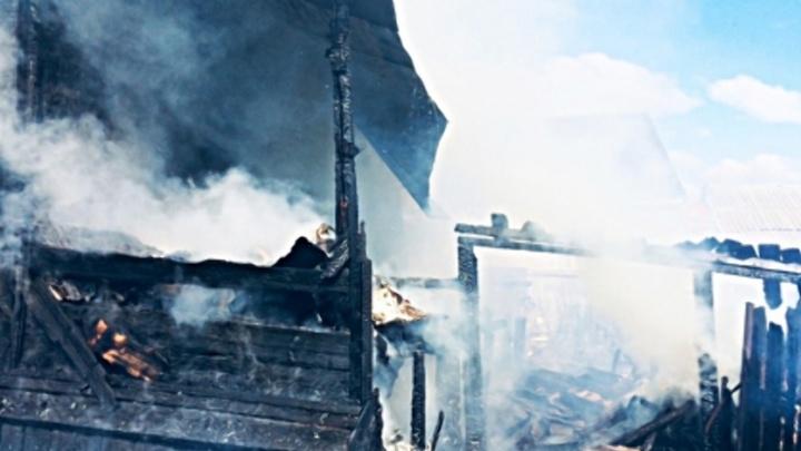 Бабушка и трое внуков погибли на пожаре в Пильнинском районе. Младшему было 2 года